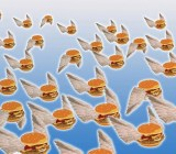 Flying hamburgers