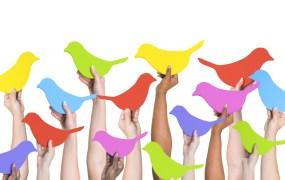 Birds hands Rawpixel Shutterstock