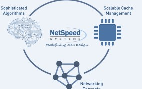 NetSpeed Systems makes it easier to design networking chips.