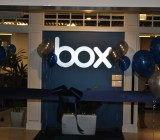 Box sign balloons