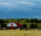 farm in late summer