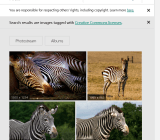 Flickr images in Sway.