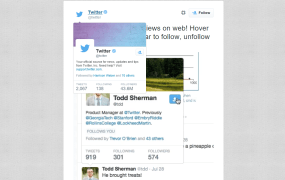 Bio previews when you hover over an avatar on Twitter.