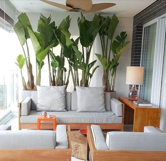 5 consejos para la decoración de terrazas Blog Verdecora - Decoracion De Terrazas Con Plantas