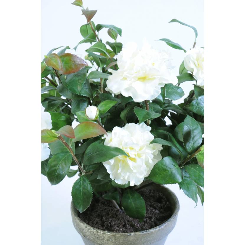Gazon Artificiel Camelia Artificiel Pot Terre