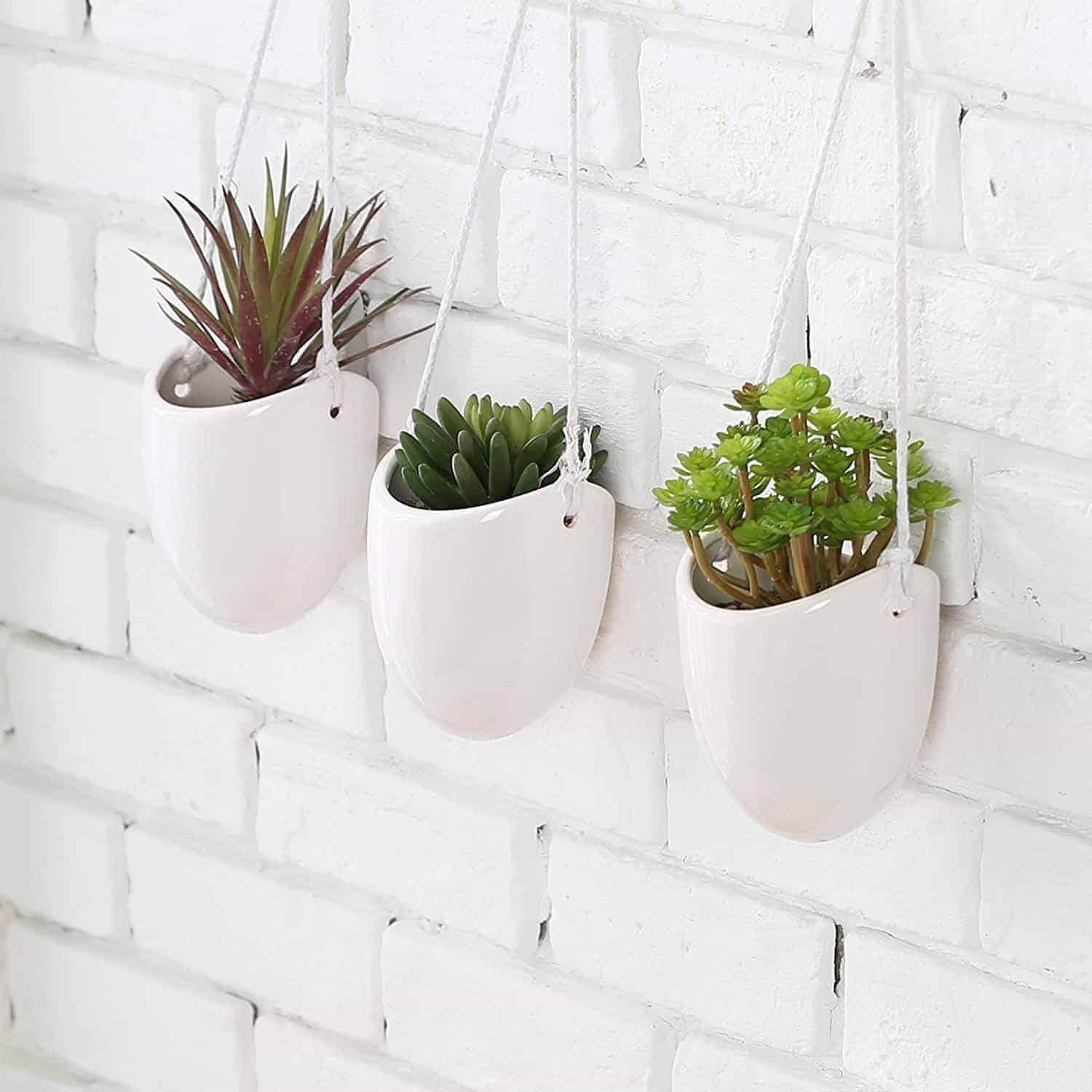 Wall Hanging Plants Best Succulent Wall Planters Vertical Garden Kit