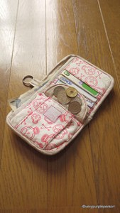 Boy&#8217;s wallet