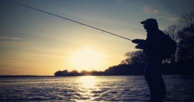 рибовлі
