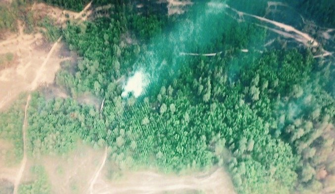 ТСН: НаДніпропетровщині майже 300 осіб гасять пожежу на