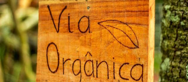Via Orgânica em Garibaldi – turismo rural com foco na saúde, sustentabilidade ambiental, social e cultural