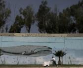 Tijuana makes me happy, sin fronteras para el arte