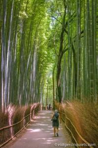 Kyoto_64