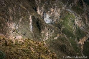 270216_Peru_500