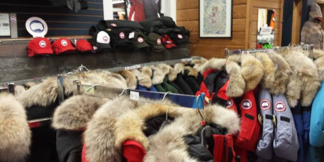 Capital Iron to no longer carry Canada Goose - Victoria Animal News