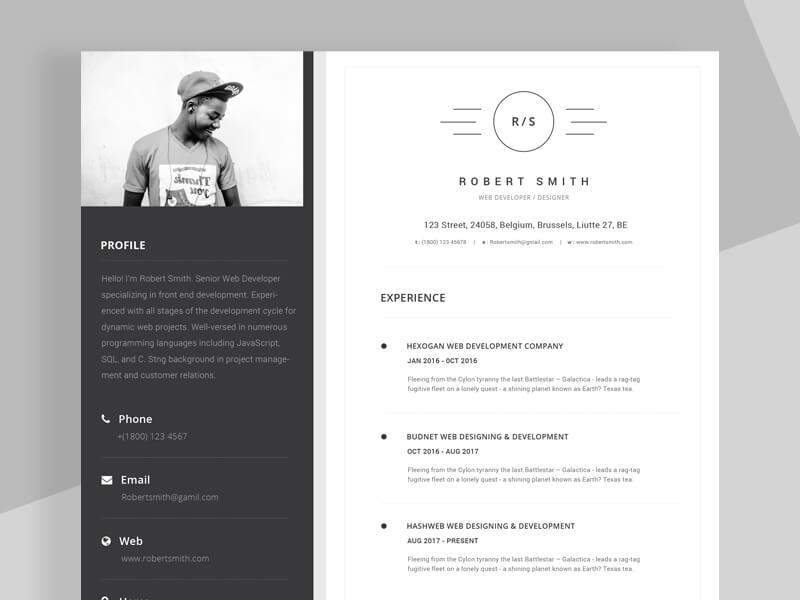 Resume/CV Template - VictorThemes