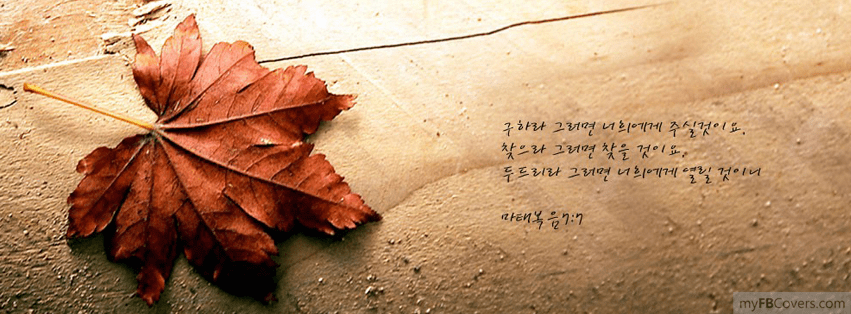 Free Fall Scripture Wallpaper Excelentes Portadas Oto 241 Ales Y Melanc 243 Licas Para Facebook