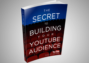 secret_building_yt_audience_portfolio2