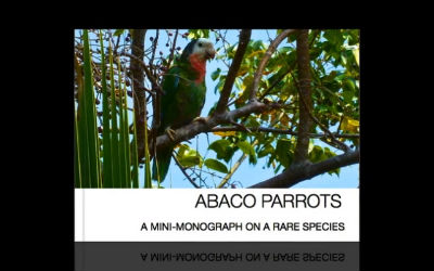 Abaco Parrots Booklet-Medium