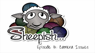 Episode 31: Camera Issues