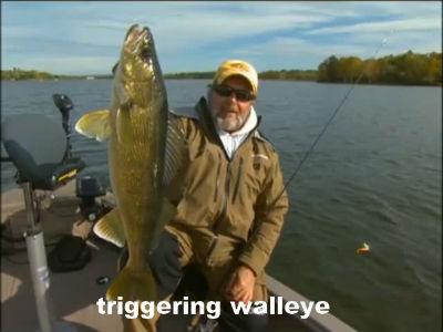 triggering walleye