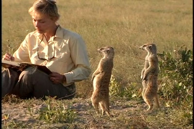 Becci Crowe &#8211; Meerkats Anyone?