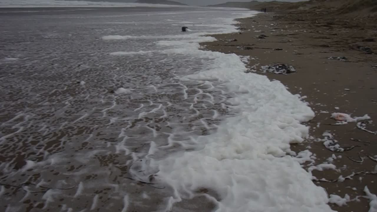 Sea Foam on the Beach (2)