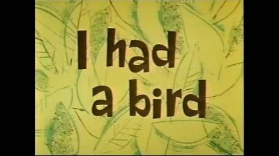 I had a bird