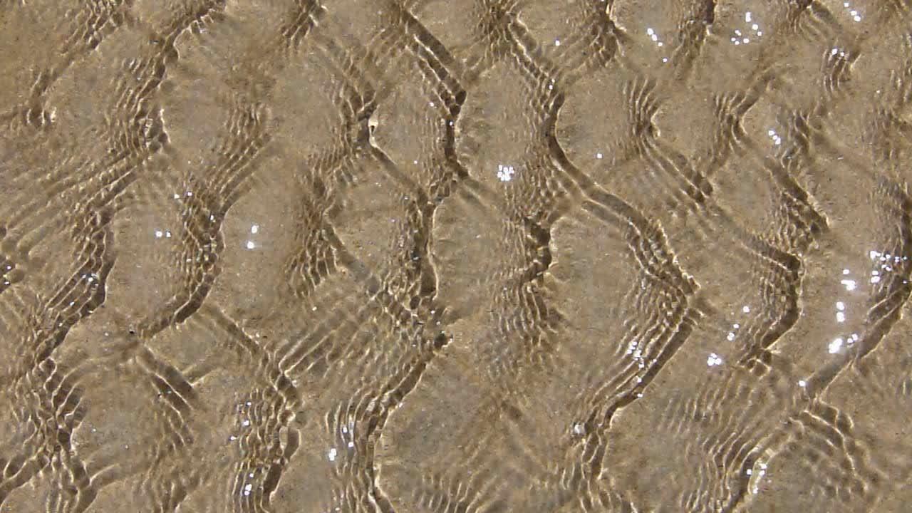 Sea Sparkles 2