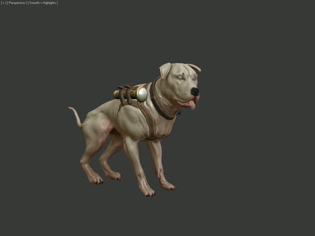 Bounder: Dog Idle Animation