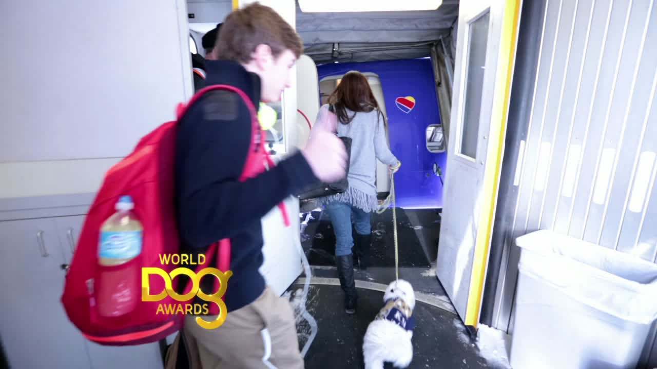 Hank Travels to World Dog Awards