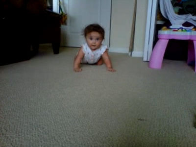 Emeline's First Crawl