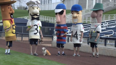 Hank the #BallparkPup's Klement's Sausage Race Debut