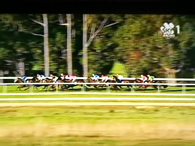 12 08 10 The Pupster 1st Pinjarra