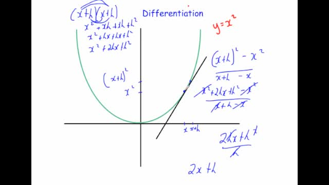 Differentiation introduction