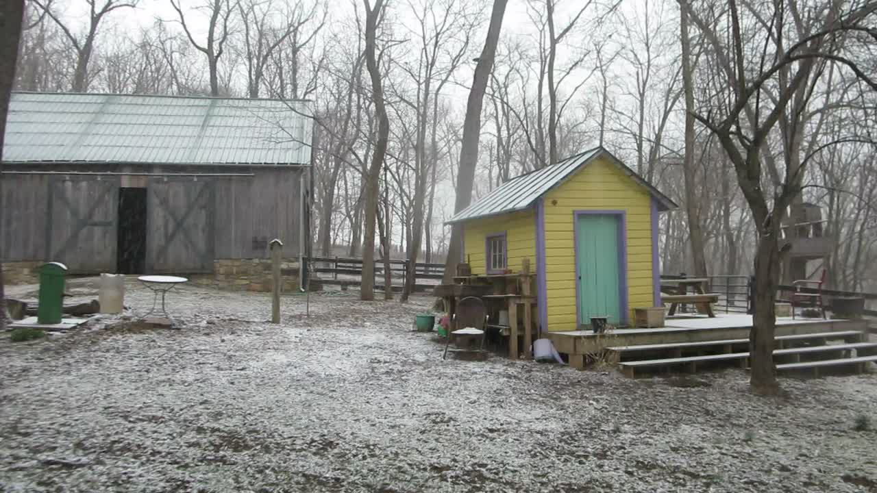 Shenandoah Snow in March