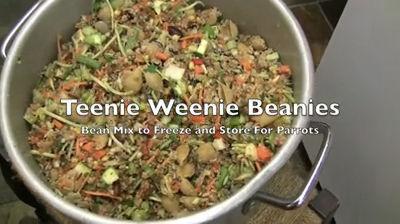 Teenie Weenie Beanies