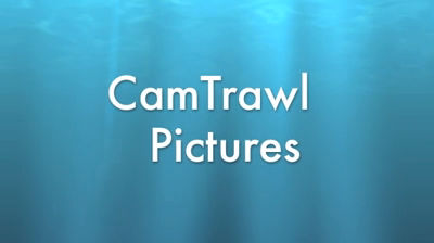 CamTrawl