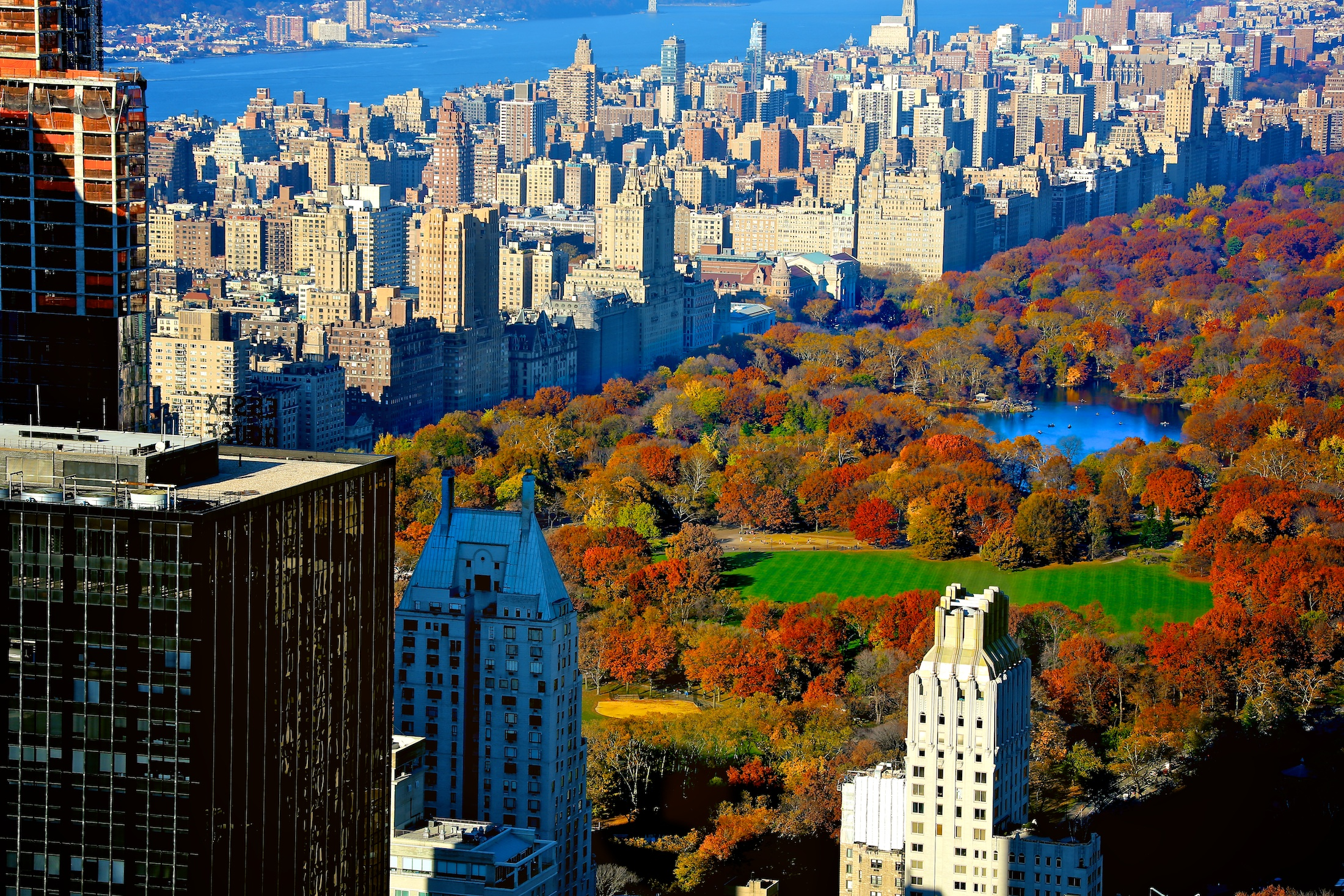 Free Live Fall Wallpaper Central Park In Autumn Vidfame Llc