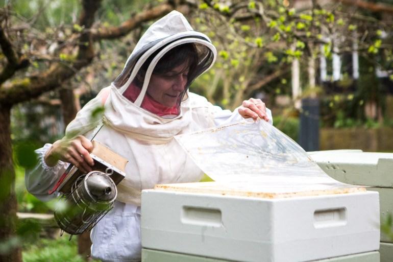 viertel-vor-stadtbienen-erika-mayr-photo-marcus-werner-64