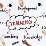 Nội dung Chương trình đào tạo dài hạn của VOICE