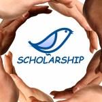 Học bổng dài hạn về Xã hội Dân sự của VOICE lần 2 - 2017