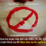 350 pixel Đảm bảo tự do ngôn luận – Những cam kết của Việt Nam về án tử hình tại UPR 2014 1024 UPR_KN_3