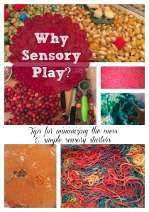 The importance of sensory play and simple ways to implement it at home. Plus, tips for minimizing the mess!