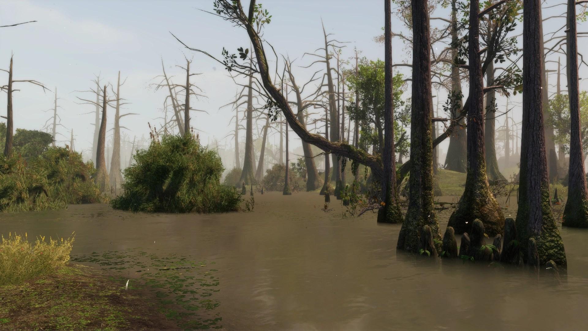 Fall Of Gods Wallpaper Louisiana Bayou Assassin S Creed Wiki Fandom Powered