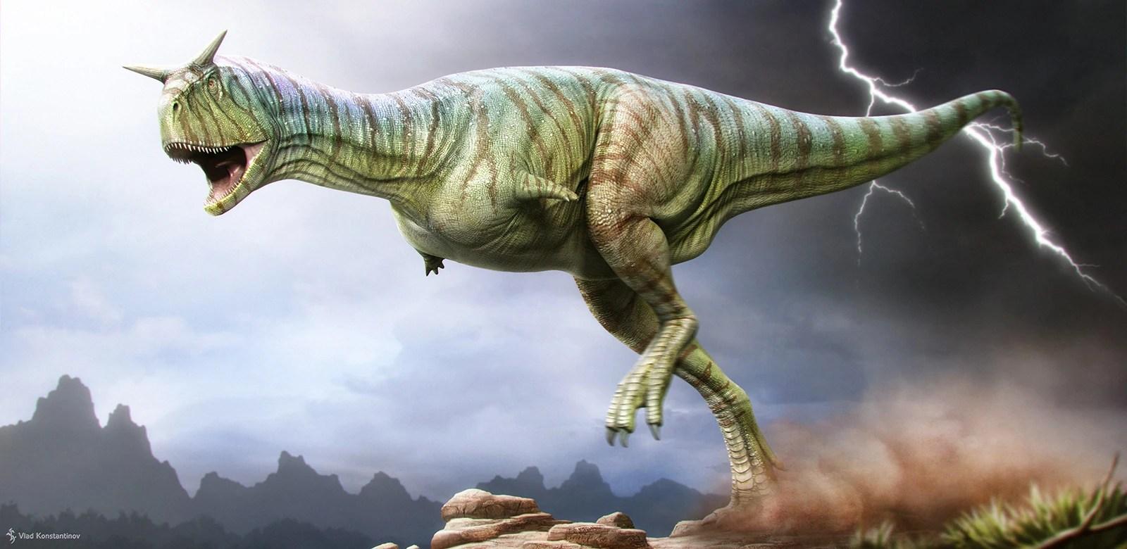 Wallpaper Skull 3d Carnotaurus Dinosaur Island Wikia Fandom Powered By Wikia