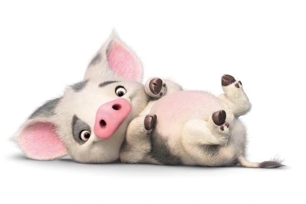 Cute Wallpapers Of Piglet And A Bunny Pua Moana Disney Wiki Fandom Powered By Wikia