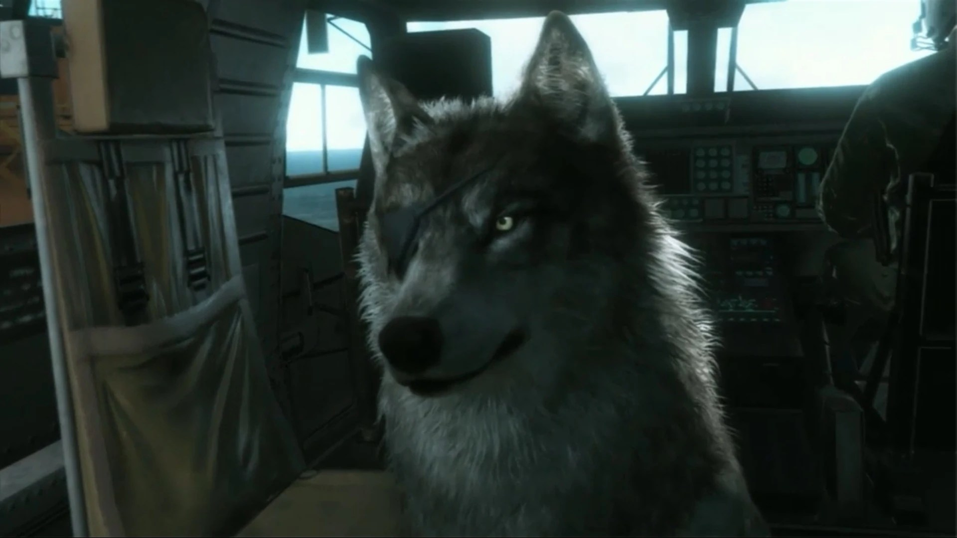 Cute Girl Wallpaper Sims 3 Dd Metal Gear Wiki Fandom Powered By Wikia
