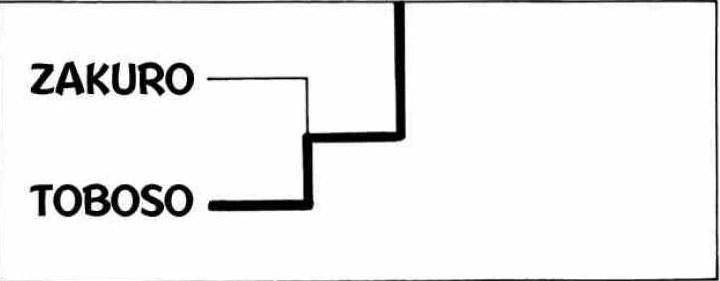 ford 302 msd diagrama de cableado