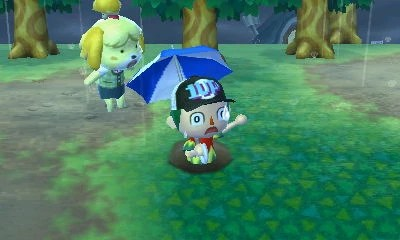 Animal Crossing Wild World Wallpaper Image Player Falls Isabelle Shocked In The Rain Jpg