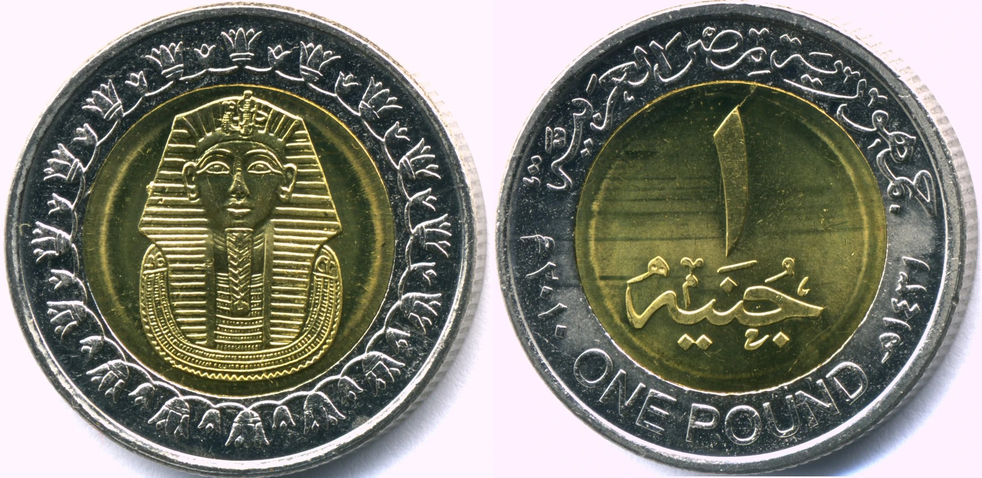Cambio Euro Libra Egipcia Egyptian 1 Pound Coin Currency Wiki Fandom Powered By